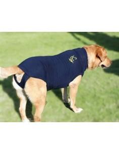 Camiseta protectora para whippet