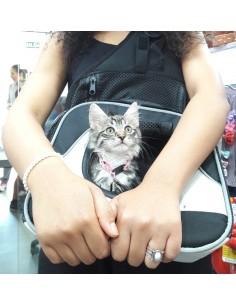 mochila transporte de gatos