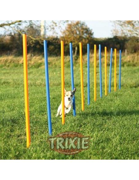 Eslalon de agility para perros