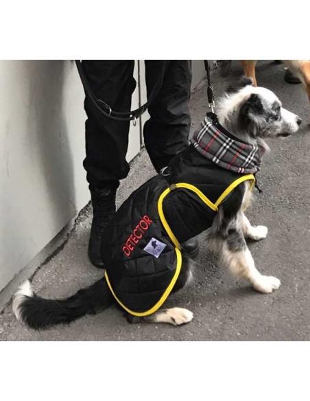 Uniforme impermeable forrado para perros detectores explosivos