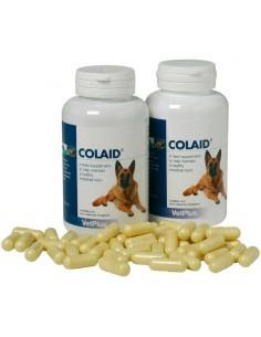 COLAID suplemento nutricional para mantener la salud intestinal del perro
