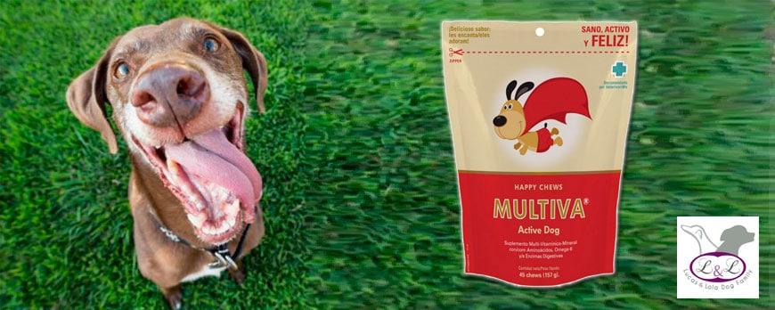 Multiva Active Dog