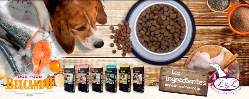 Pienso para perros BELCANDO sin grano, Grain Free