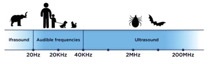 repelente electronico de pulgas y garrapatas