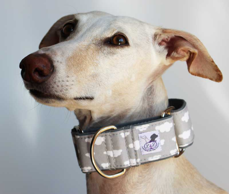 collar martingale galgo