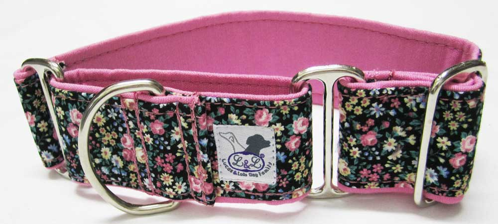 collar galgo martingale