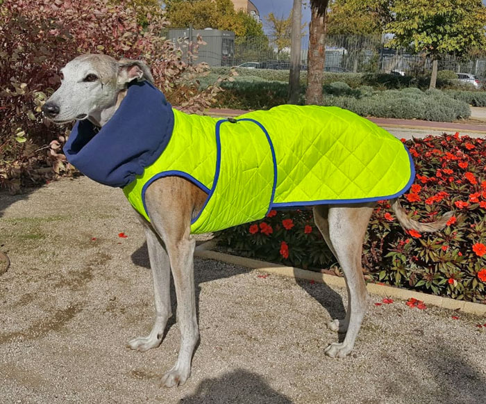 abrigo-alta-visibilidad-galgo