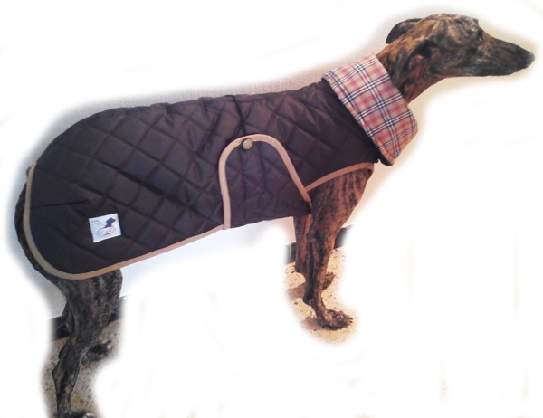 abrigo-impermeable-para-galgo-color-marron-chocolate