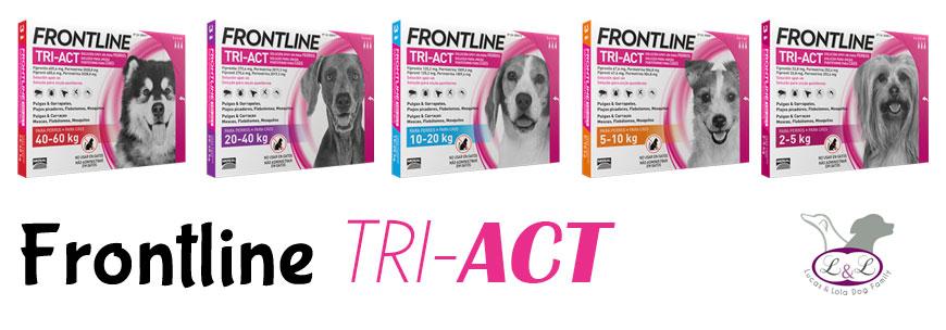 Comprar Pipetas TriAct para perros