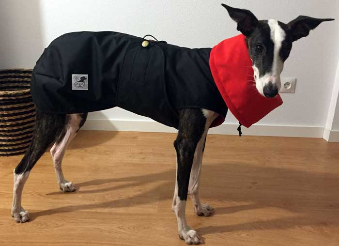 abrigo impermeable negro galgo