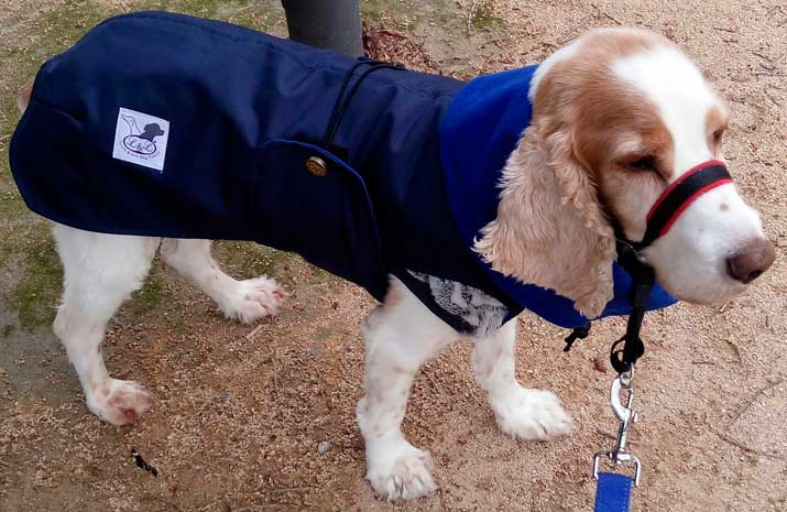 abrigo con forro polar perro