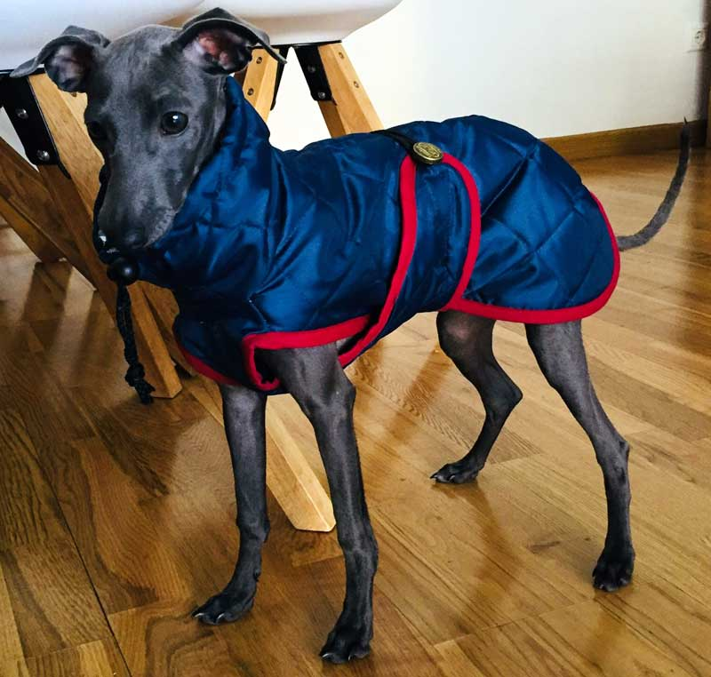 abrigo impermeable piccolo