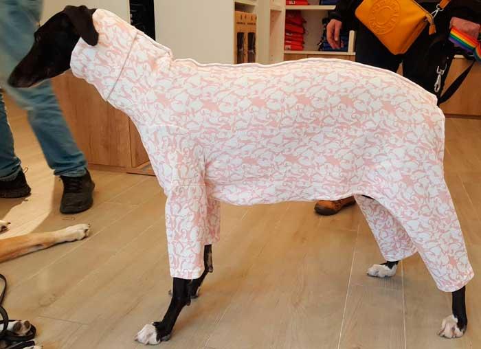 pijama galgo