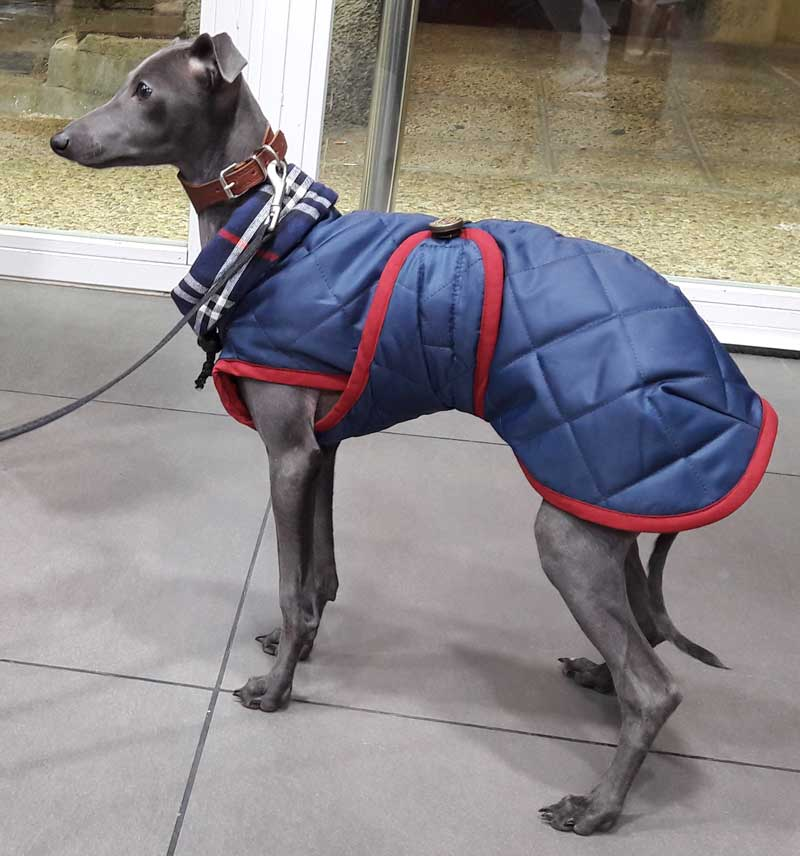 abrigo impermeable piccolo italiano