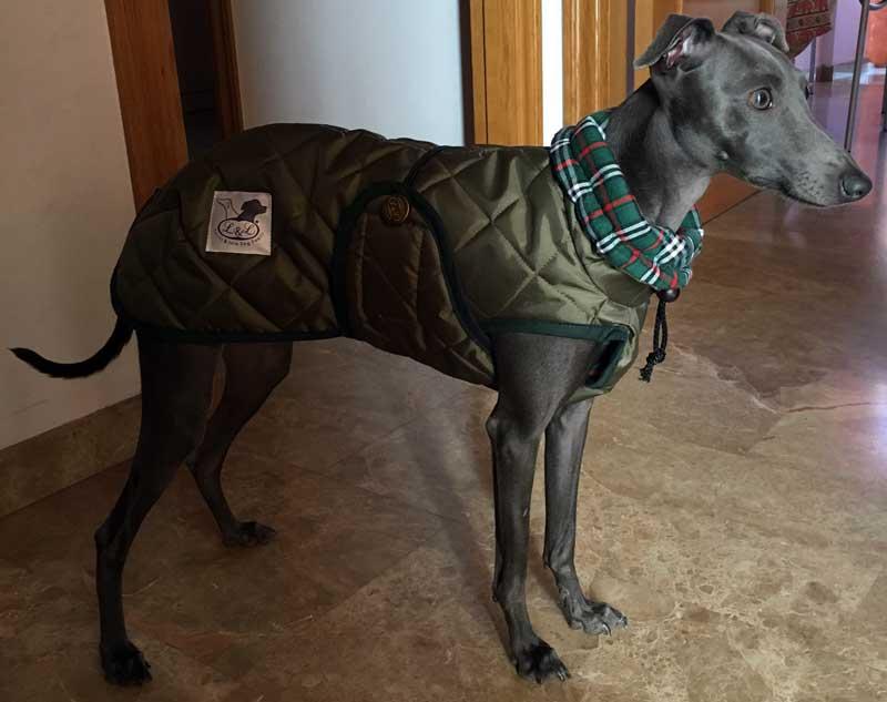 abrigo verde piccolo italiano