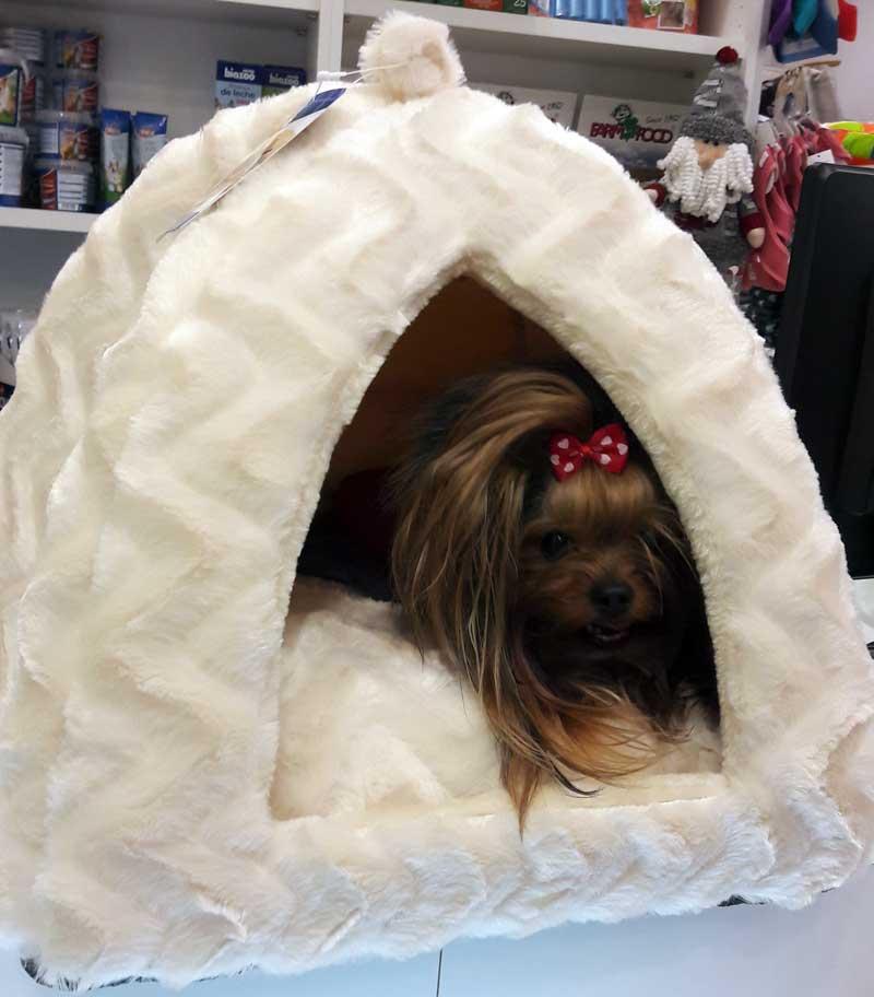 cuna cueva para perro