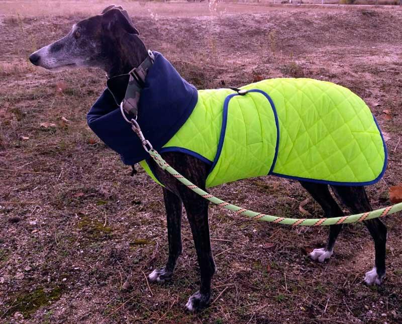 abrigo alta visibilidad galgo