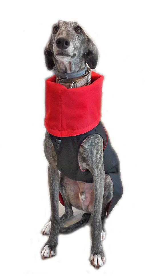 oxispeed tonico vital para perros