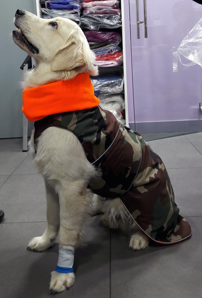 f1d43adaa3b13 abrigo impermeable camuflaje para perro