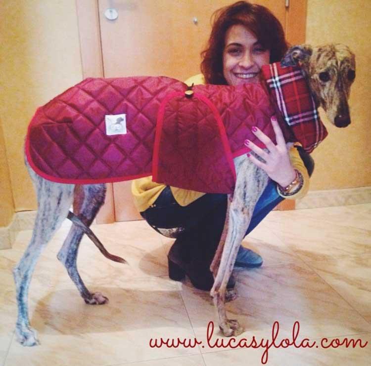 abrigo granate acolchado perro